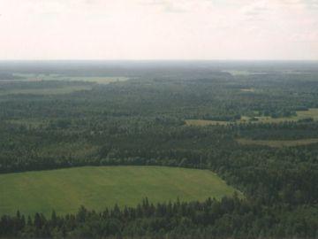 Lõuna vaade Kusagile sinna metsade vahele jääb soo ja Pohla küla